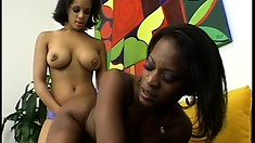 Lusty ebony girlfriends trade off wearing the strap-on and banging each other