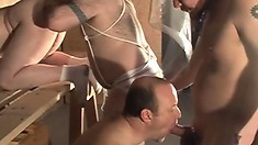 Four big gay daddies love to have an exciting cocksucking fest