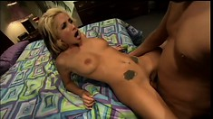 Blonde tart Randi Wright takes horny Alex's stiff prick in her ass