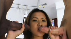 Two eager stallions are shoving their pretty cocks in tight vagina