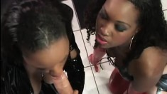 Bisexual black babe gets DPed by his white cock and her girl's fake cock