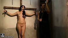 The slave collector is at it again and has a sweet blonde and brunette to play with