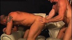 A pair of hairy gay dudes engage in hardcore anal sex on the couch