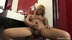 Buxom blonde ladyboy Raica Ferrari reveals her body and strokes her rod