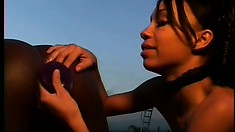 Two chocolate lesbians lick and finger each other's holes by the pool