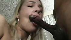 Pretty blonde with perky boobs has a black shaft exploring her holes