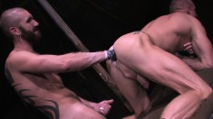 Insatiable Gay Hunk Welcomes A Hard Pole And A Fist Up His Hungry Ass
